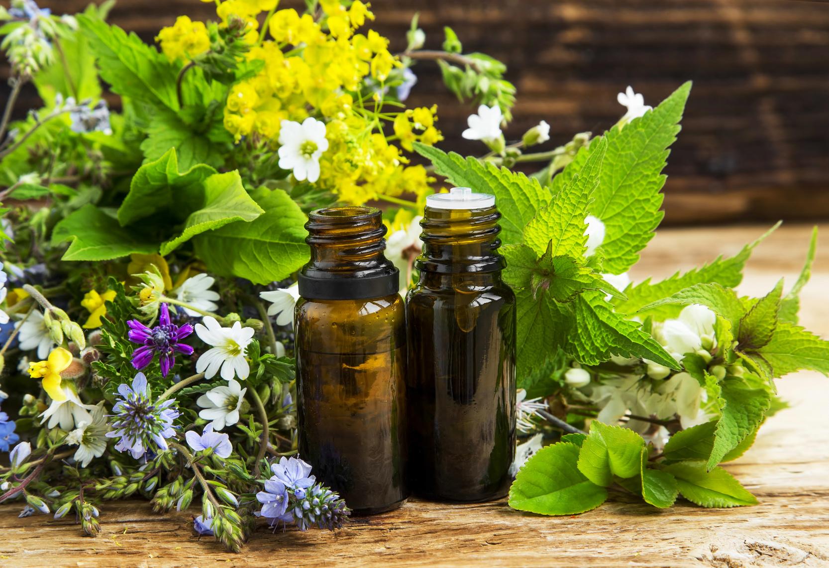 Alternative herbal medicine with medicinal plants essence bottles